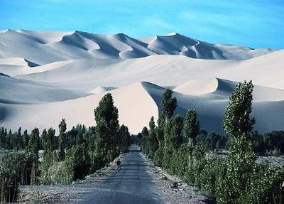 Gobi and Green [click on picture for link to Futurist blog and AFP story]