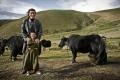 kham_nomads_05_franc_pallars_lpez_big